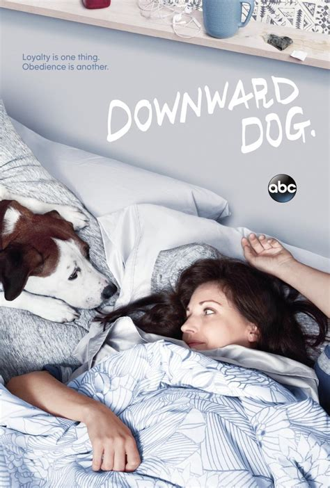 puppy tv show downward tv series 2017 filmaffinity