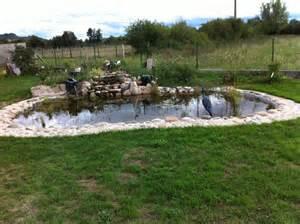 bassin exterieur poisson bassin exterieur poisson sur
