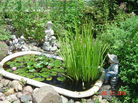 what to do with an old bathtub 57 best images about bathtub ponds on pinterest gardens backyard ponds and clawfoot