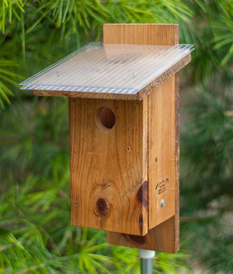 sparrow resistant bluebird house plans sparrow resistant bluebird house plans 28 images get canadian bat house plans the