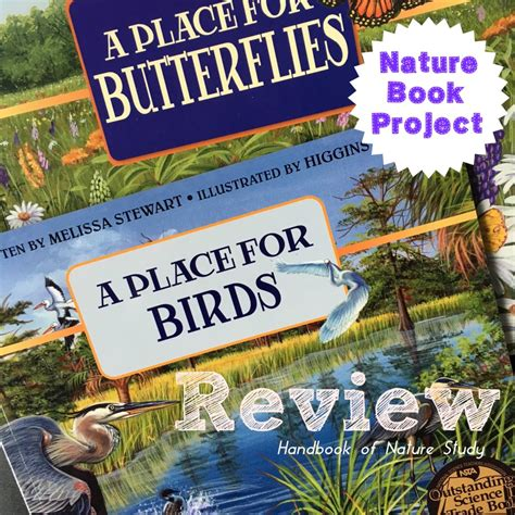 A Place Book Summary A Place For Birds And Butterflies Book Review