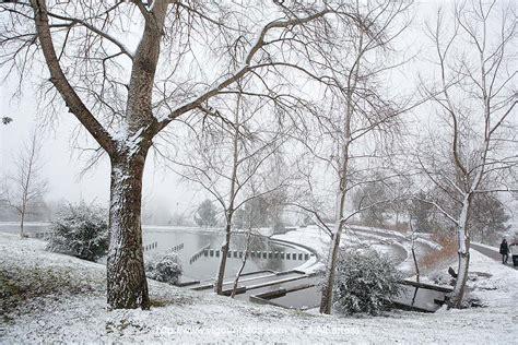 imagenes de jardines nevados fotos de nieve en vigo paisajes nevados cuvi y monta 209 a