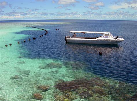 imagenes extrañas del mar una isla poblada de criaturas extra 241 as en indonesia taringa