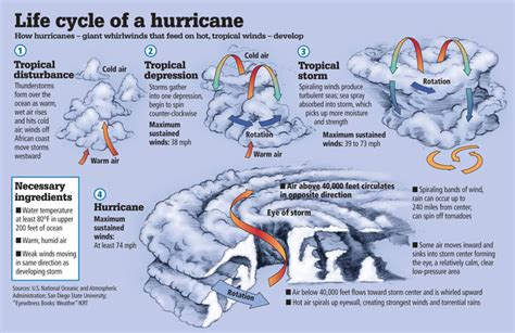 the life of a the life cycle of a hurricane sciences