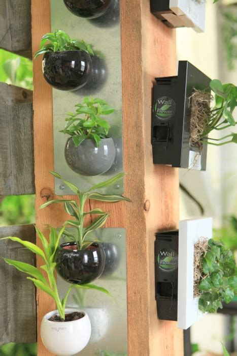 liven   home  indoor vertical wall planters