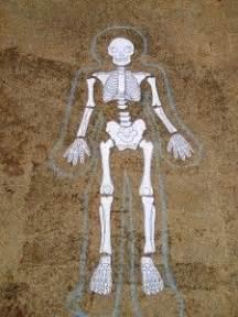 printable life size skeleton science pinterest
