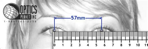 printable pupillary distance ruler printable ruler for pupillary distance