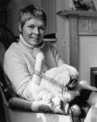 Judi Dench - Actress - Biography