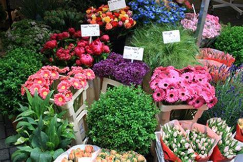 fiori estivi matrimonio 10 fiori di matrimonio suddivisi per stagione per le tue