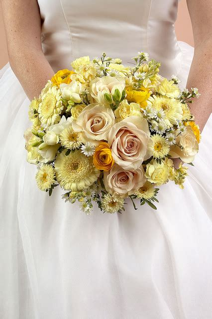 Wedding Bouquet Definition by What Does Nosegay Definition Of Nosegay By