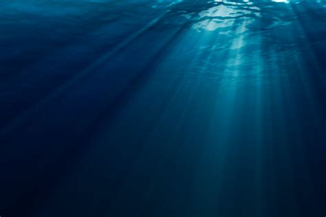 Dekaron Wallpapers Hq Dekaron Pictures 4k by Underwater Wallpapers Photography Hq Underwater Pictures