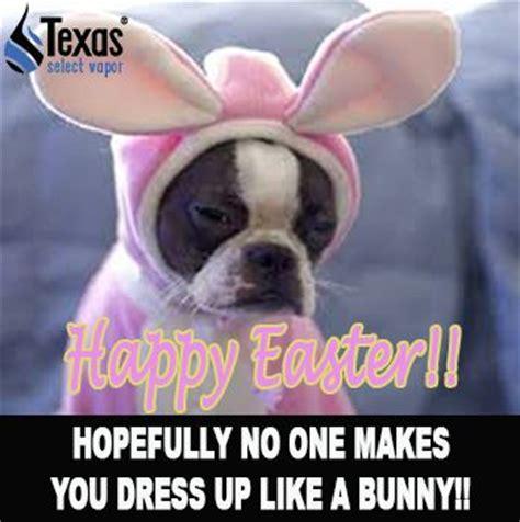 Happy Easter Meme - pinterest the world s catalog of ideas