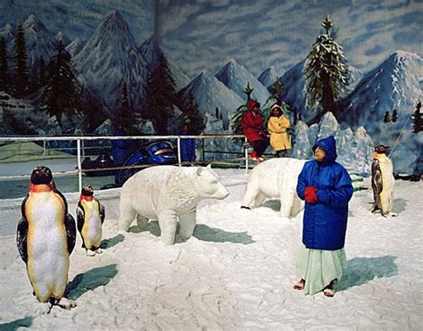 Mba Visiting Faculty In Hyderabad by Snow World In Hyderabad A Place To Visit With Your