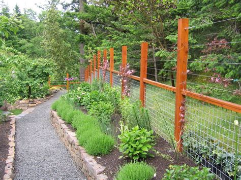 deer proof gardens ideas landscape traditional with herbs