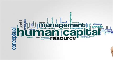 Mba Human Capital Competitin by What Is Human Capital Management Advance Systems Inc