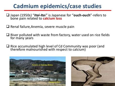 Cadmium Poisoning Detox by 337 Best Images About Toxins On Mercury