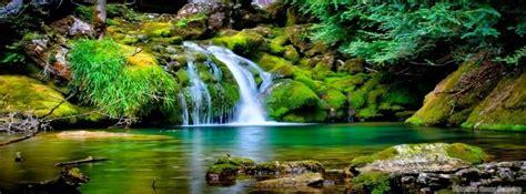 imagenes sorprendentes naturaleza 20 sorprendentes beneficios de la naturaleza en nuestra