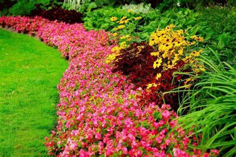 Bright Flower Border Beautiful Gardens Pinterest Bright Garden Flowers