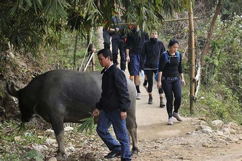mark zuckerberg biography versi indonesia zuckerberg gets easier ride in vietnam than his website