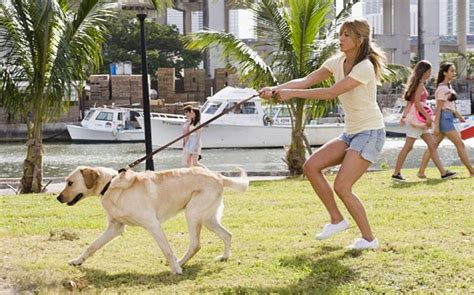 marley and me 9 things all owners will relate to identity magazine