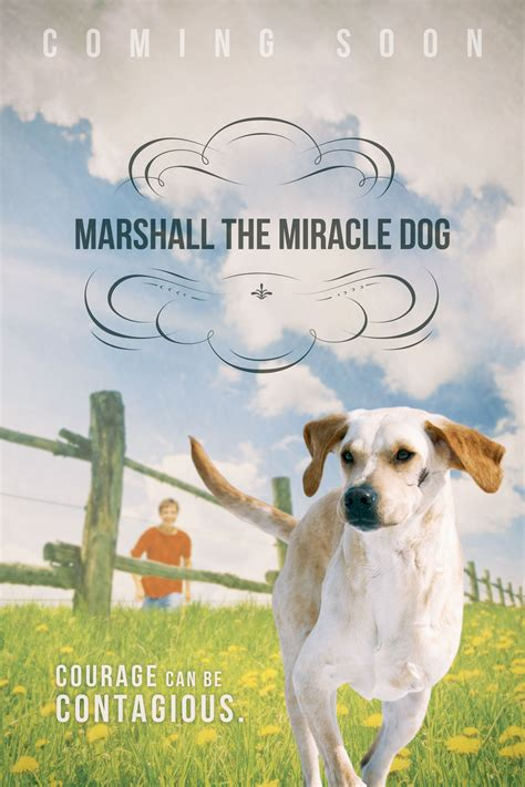 Marshall The Miracle Marshall The Miracle