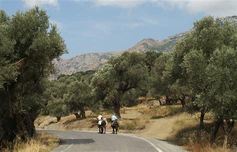 Mit Freundlichen Grüßen Anders Ferienhaus Auf Kreta Der S 252 Den Kretas Eine Herrliche Urlaubsregion Urspr 252 Nglich Und Mit