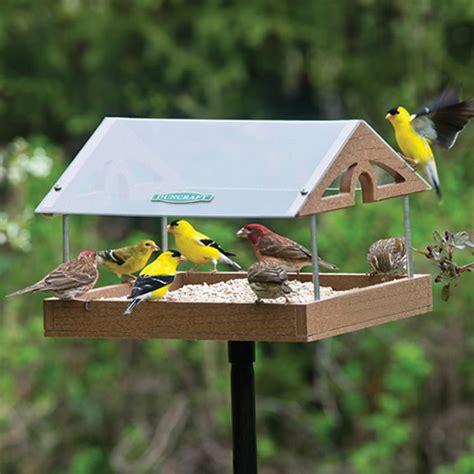 platform fly thru tray wild bird feeders