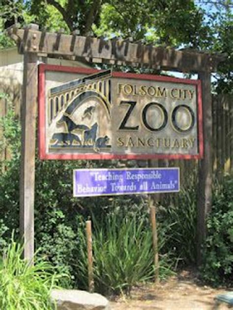 Night Parks And City Zoo On Pinterest Folsom Zoo Lights