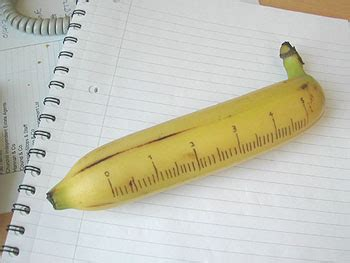 Banana For Scale Meme - bananana banana for scale know your meme