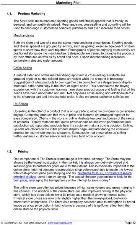 strategy summary template marketing plan excerpt product marketing strategy