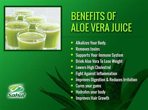 Aloe Vera Benefits Detox by Best 25 Aloe Benefits Ideas On Aloe Juice