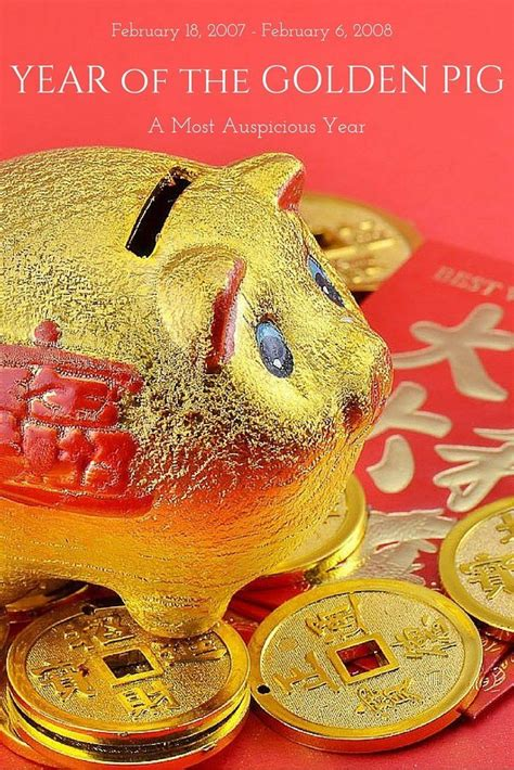 new year animals golden pig 137 best new year images on