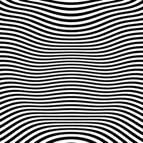 pattern hidden image 17 best ideas about optical illusion art on pinterest