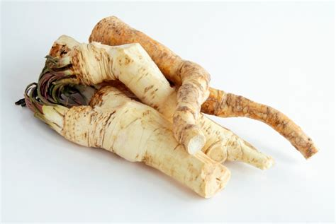 horseradish in english horseradish recipes