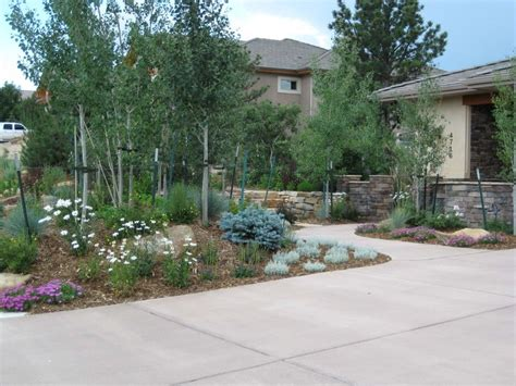 landscapers colorado springs colorado springs demonstration garden xeriscape landscaping services fredell enterprises