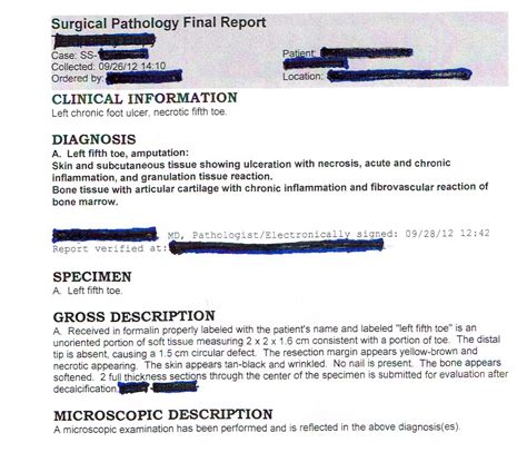 surgical pathology report sle study 2 grossing technology in surgical pathology