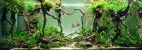 Rock 3d 45cm X 10 Mtr aqualux concept aquariophile belgique luxembourg