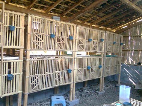 Kandang Ayam Pagar Bambu gambar pagar rumah dari bambu rumamu di