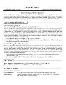 Risk Management Resume free credit risk manager resume exle