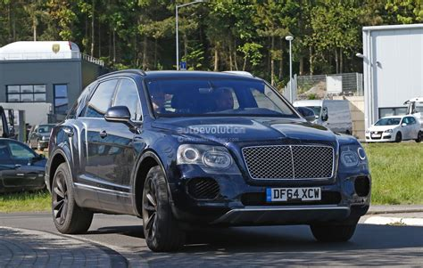 bentley suv 2016 2016 bentley bentayga suv spotted nearly camo free