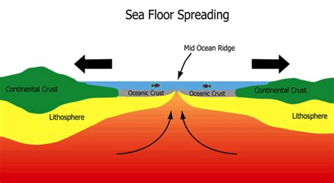 sea floor spreading labeled diagram tectonic hazards your geography