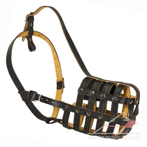 large muzzle st bernard muzzle strong leather basket big muzzle padded