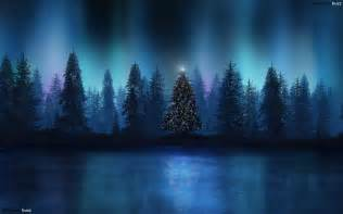 Beautiful christmas tree wallpapers 22