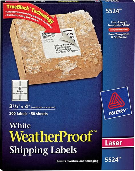 avery 5524 template avery 174 white weatherproof labels 5524 avery
