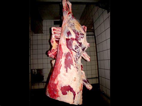 come cucinare la tagliata di bovino adulto carne di manzo e vitello tagli e usi in cucina