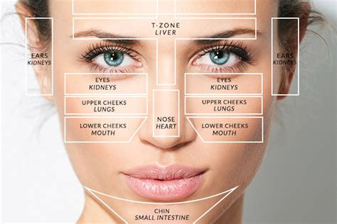 mapping acne mapping what your is telling you about your health