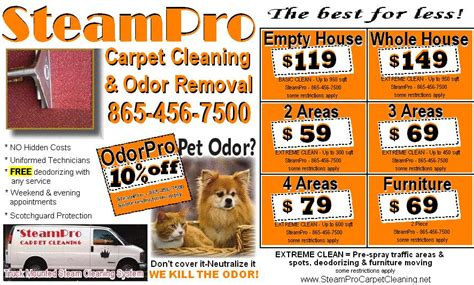 upholstery cleaning deals knoxville carpet cleaning service free savings coupons