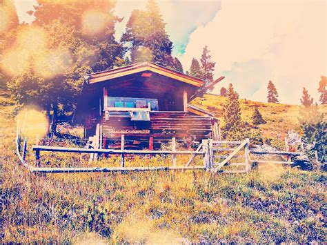 quella casa nel bosco completo the s fall quella casa nel bosco