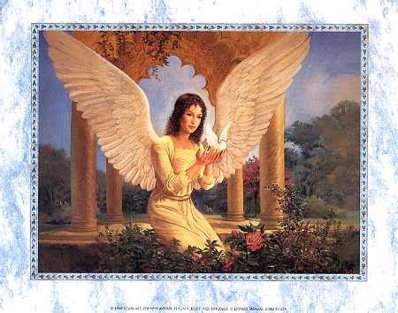 angelo anzalone gli umani la home page salviamo balto