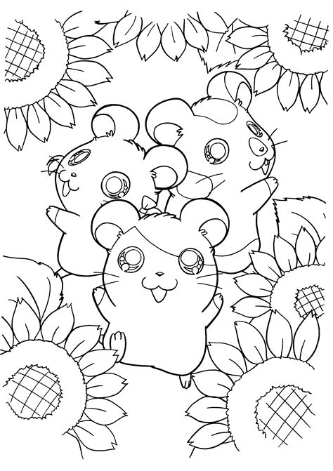 hamtaro coloring pages picgifs com
